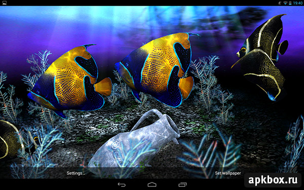 My 3D Fish II