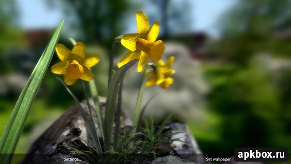 Nature Live: Spring Flowers