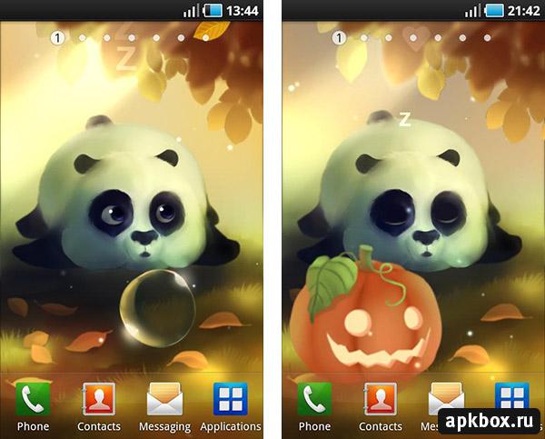 Panda Dumpling